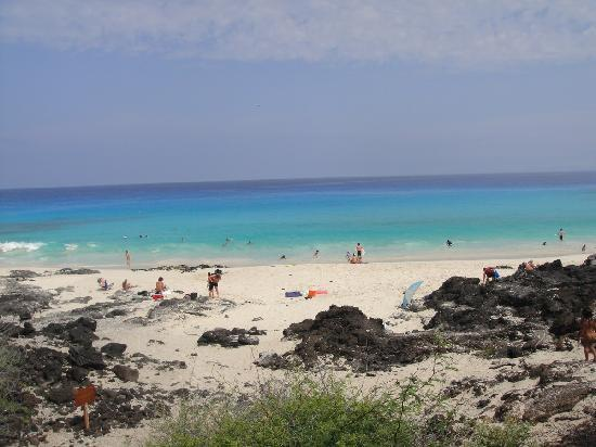 Manini'owali Beach (Kua Bay): Gorgeous white sand beach