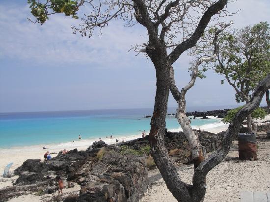 Manini'owali Beach (Kua Bay): Blue blue ocean
