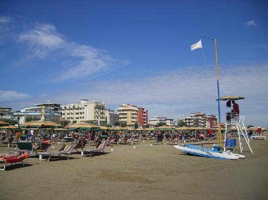 Hotel Cliff: А вот как выглядит пляж - весь в лежаках