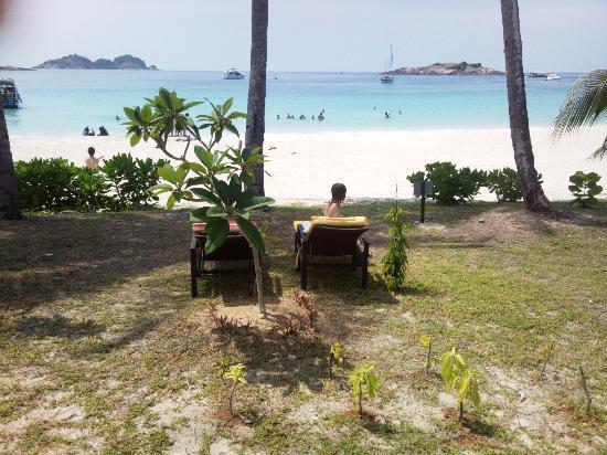 Sari Pacifica Hotel, Resort & Spa - Redang Island: vista dalla camera
