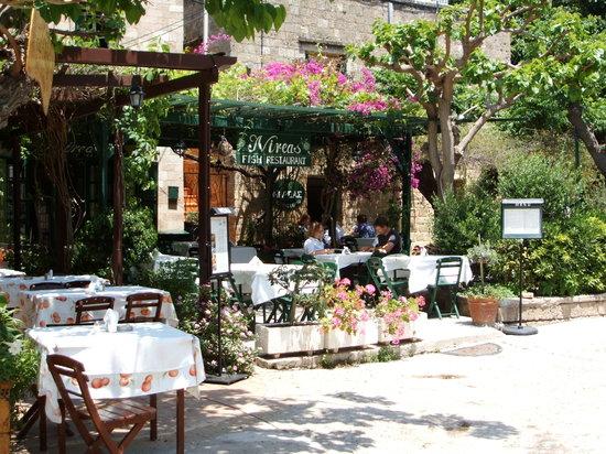 Nireas : Het sfeervolle terras. Een oase van rust in het drukke centrum van Rhodos Stad (Old Town)
