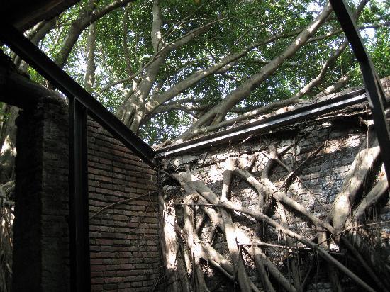 Tainan, Taiwan: 歴史と自然が織りなす独特の景観