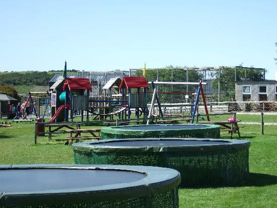 Heads of Ayr Farm Park : one of attractions