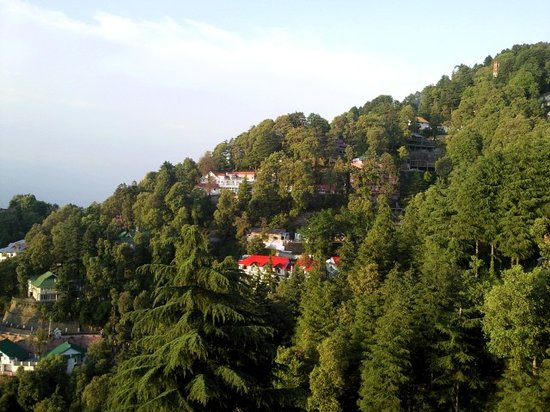 Lall Ji Tourist Resort: Resort on a Hill