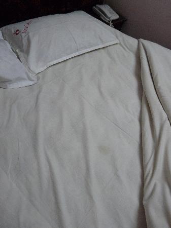 Hotel Mount View: task on bottom sheet