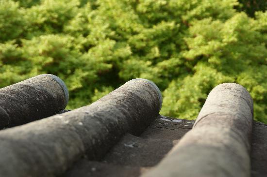 Maruoka Castle: 石瓦