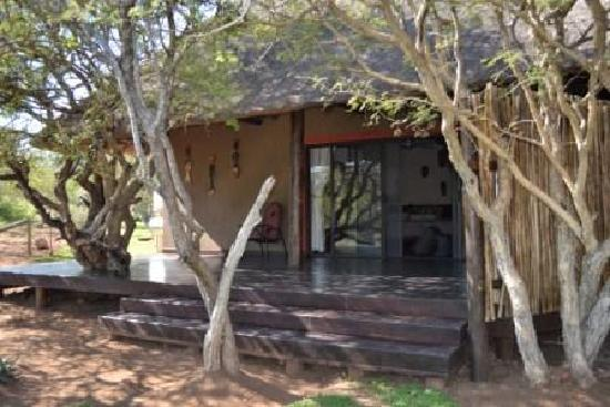 Naledi Bushcamp and Enkoveni Camp: The deck of the room overlooking the bush