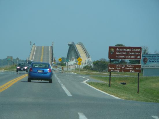 ‪‪Maryland‬: Crossing Verrazzano Bridge to Assateague Island‬