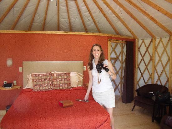 The Wilds: Yurt #2