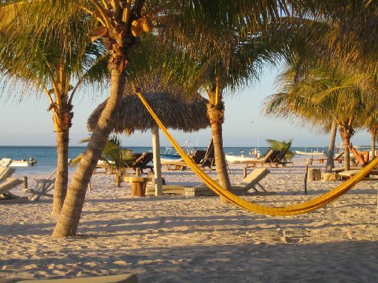 Holbox Hotel Casa las Tortugas - Petit Beach Hotel & Spa: Beautiful Beach!