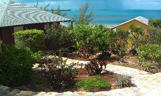 Shannas Cove Resort: Shanna's Cove