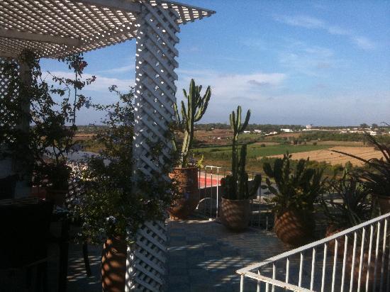 L'Oum Errebia : Terrasse1