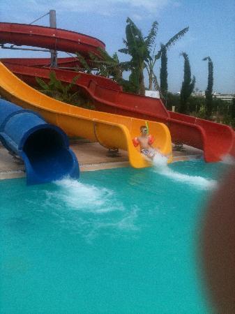 Palm Wings Beach Resort: pool