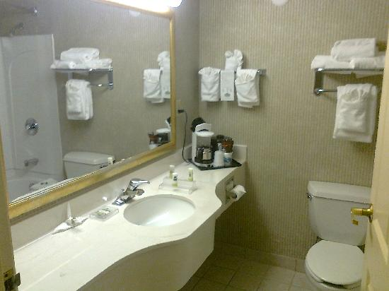 Country Inn & Suites By Carlson, Asheville Downtown Tunnel Road (Biltmore Estate): Bathroom
