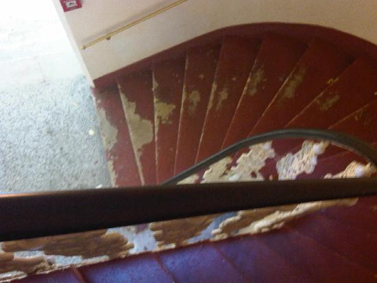 Hotel Stefanie: The dirty stairs leading up to my room