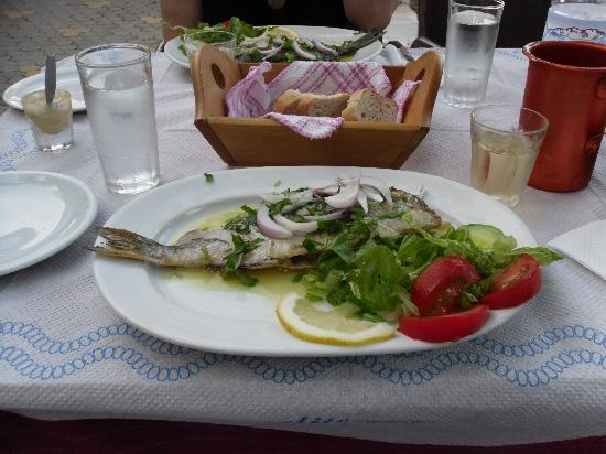 Kastalia Village & Saint Nikolas: Dorade