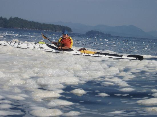 Adventuress Sea Kayaking: broken group