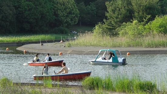 Showa Kinen Park : Couples and friends enjoying the lake with hired watercraft
