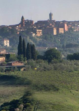 Aia Mattonata Relais: View to Sienna from a nearby hill