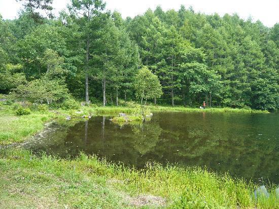 Mishakaike Pond: 池の周り