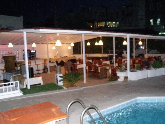 Alta Park Hotel : View of the restaurant & pool 2