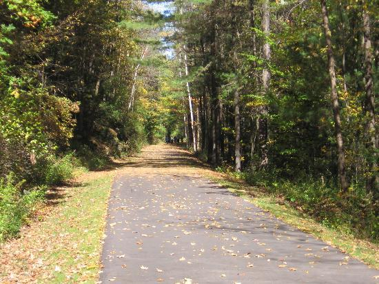 Wingate by Wyndham Lake George: bike path behind hotel