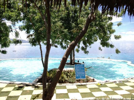 Bluewater Sumilon Island Resort: the infinity pool at the top