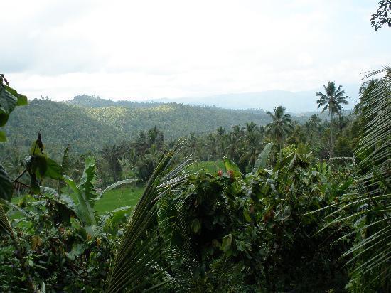 Puri Lumbung Cottages: trekking