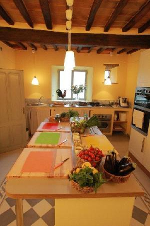 Province of Arezzo, Italia: Main kitchen for the lessons