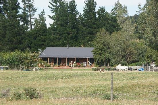 Mingary Farmstay B&B Accommodation: View of the house from the pastures