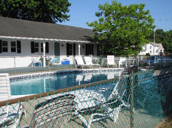 Sea Shell Motel: view of pool and motel