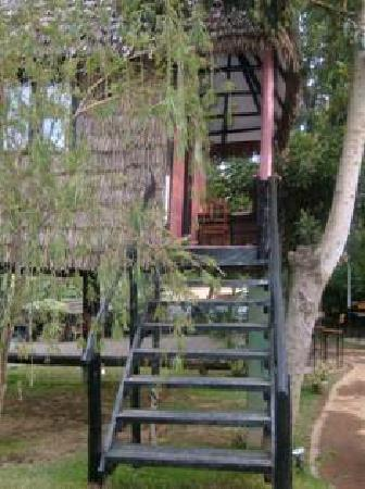 L Oasis Lodge and Restaurant Hotel: One of our stilt houses