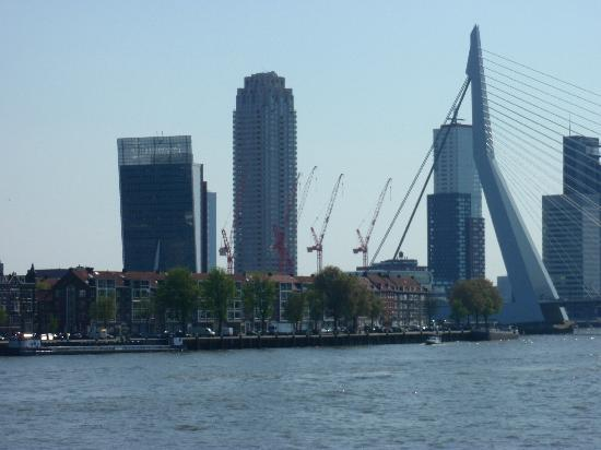 Rotterdam, The Netherlands: erasmusbrug