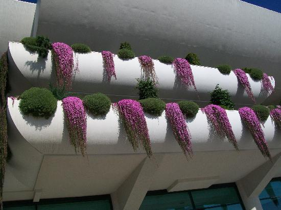 Hotel Deloix Aqua Center: Hanging plants from all the Balconies