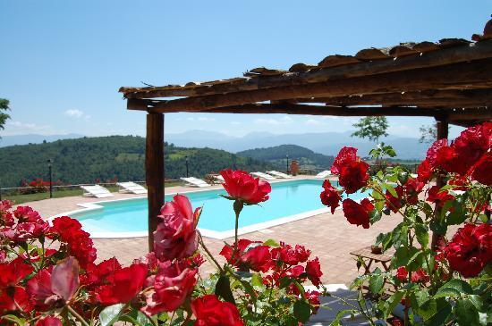 Agriturismo Santa Caterina : Alle pendici dei Monti Martani, luogo ideale per rilassarsi, ottima cucina genuina, gestione fam