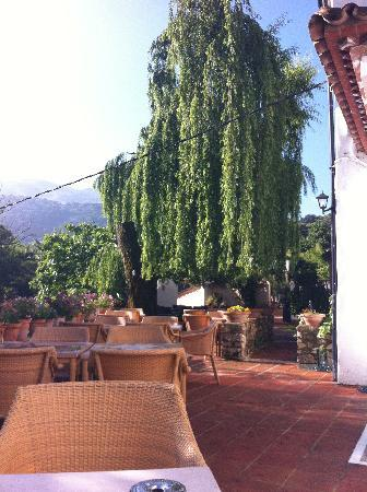Molino del Santo: The outside area of the restaurant
