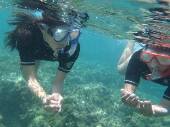 Banak House Calatagan: Snorkeling