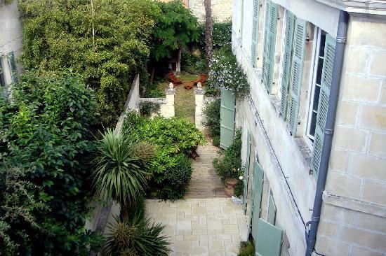 Palmier sur cour : Vue depuis Azaidé