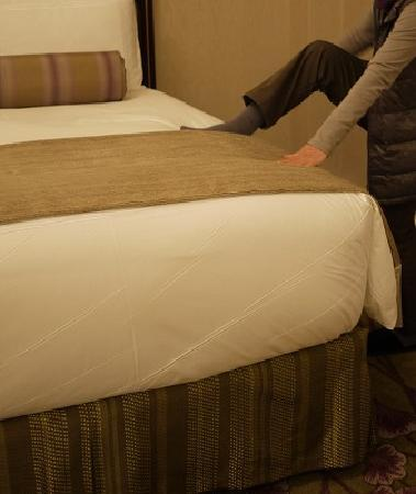 โรงแรมแฟร์มอนท์ พีซ: 高すぎ