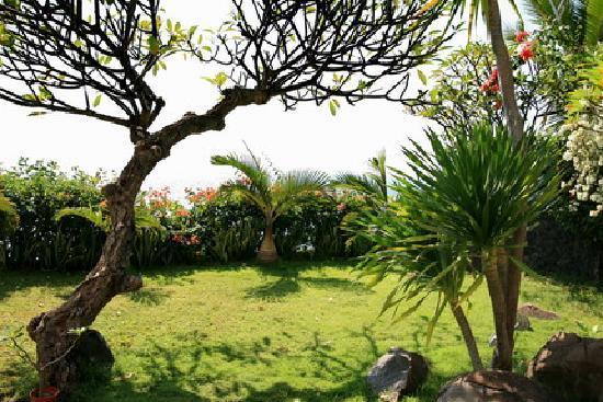 Bed & Breakfast Aquaterrace: garden2