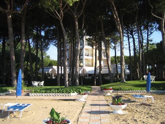 Hotel Beau Rivage Pineta: Sehr schön gelegenes Hotel