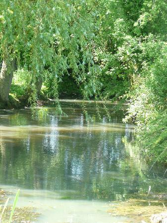 Hill Farm House : The pond
