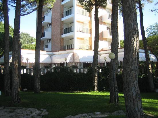Hotel Beau Rivage Pineta: Liegt in mitten von Pinien