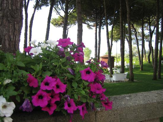 Hotel Beau Rivage Pineta: Liebevolle Gestaltung