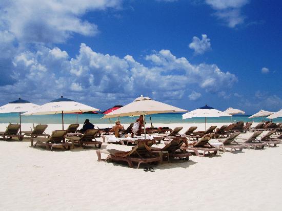 El Taj Oceanfront & Beachside Condos Hotel: Beachfront, El Taj