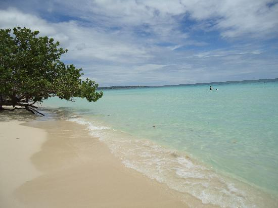 Seven Mile Beach Past Sandals And Beaches Picture Of