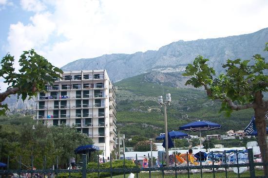 smartline Bluesun Neptun: Hotel as seen from the beach