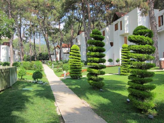Club Med Palmiye: Le parc/ les bugalows