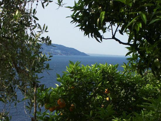 Hotel La Terrazzina: view from the balcony