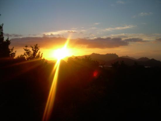 Totaranui : Sunrise